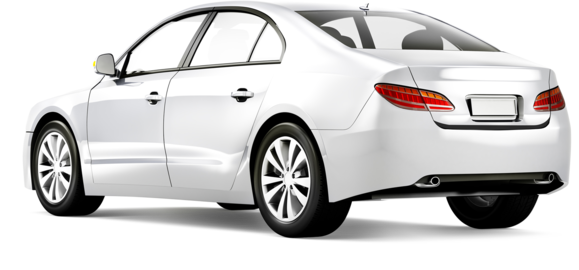 Product » Rear Bumper Protectors